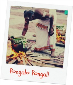 Pongalo Pongal!